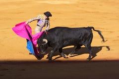 塞维利亚- 5月16 :西班牙斗牛士执行一头斗牛在Th 免版税图库摄影