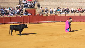 塞维利亚- 5月16 :西班牙斗牛士执行一头斗牛在Th 免版税库存图片