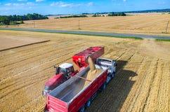 填装卡车用麦子种子 库存照片