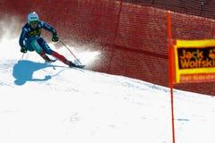 填装奥迪FIS高山滑雪的世界杯-人的下坡镭彼得 免版税库存照片