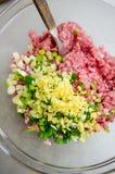 填装猪肉、虾和春天葱的饺子 免版税库存图片