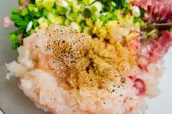 填装猪肉、虾和春天葱的饺子 库存照片