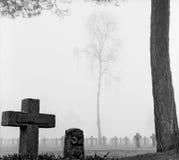 墓地交叉墓碑薄雾公园杉树 免版税库存图片