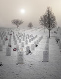 墓地墓石射击了垂直的退伍军人 免版税图库摄影