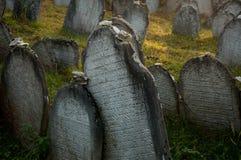 墓地犹太老布拉格 免版税库存图片