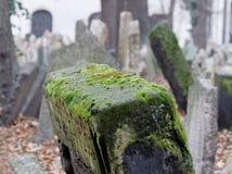 墓地犹太老布拉格 库存图片