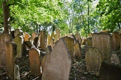墓地犹太老布拉格 图库摄影