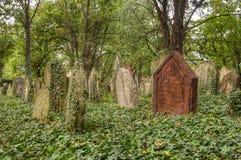 墓地犹太老 免版税库存照片