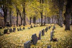 墓地 库存图片