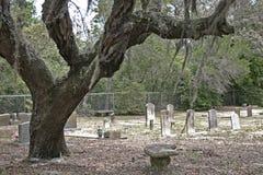 墓地shellbank 库存图片