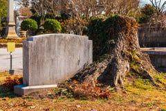 墓碑和树桩在奥克兰公墓,亚特兰大,美国 免版税库存图片