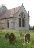 墓碑在一个长得太大的墓地 库存图片
