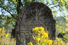 墓碑在老犹太公墓 库存照片
