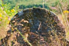 墓碑在老犹太公墓 免版税图库摄影