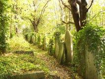 墓碑在Highgate公墓 免版税库存图片