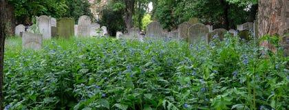 墓碑照片在布兰蒂街的,白教堂,东伦敦英国历史的犹太公墓 库存照片