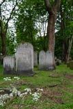 墓碑照片在布兰蒂街的,白教堂,东伦敦英国历史的犹太公墓 免版税库存图片