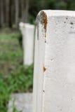 墓碑线与青苔的 免版税库存图片