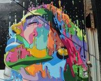 墙壁上的艺术在东部威廉斯堡在布鲁克林 免版税图库摄影