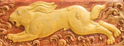 墙壁上的金黄兔子 图库摄影