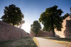 墙壁和结构树在Kalemegdan堡垒在贝尔格莱德 免版税图库摄影