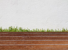 墙壁和绿草在木地板上 免版税库存照片