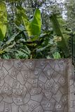 墙壁在度假旅馆里在坦桑尼亚 库存照片