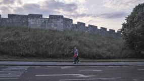 墙壁在约克,英国 免版税库存图片