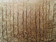 墙壁的接近的具体射击 图象包括一个作用黑白口气 免版税库存照片