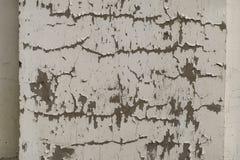墙壁的灰色表面有破裂的油漆的,膏药,特写镜头 免版税库存照片