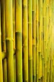 墙壁竹子 库存照片