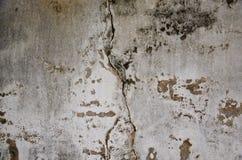 墙壁第二 免版税库存图片