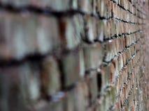 墙壁舒展在透视背景下 免版税库存照片