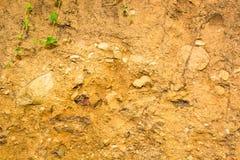 墙壁被混合在土壤和石头之间。 图库摄影