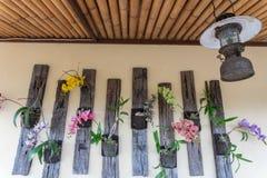 墙壁装饰的一些五颜六色的兰花花和类型在一家餐馆在Ubud,巴厘岛 免版税库存照片