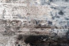 墙壁装饰纹理 免版税库存图片