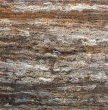 墙壁陶瓷砖地板 免版税库存照片