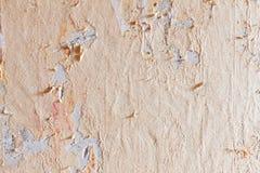 墙纸。 免版税库存照片