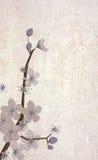 墙纸和纹理 库存例证