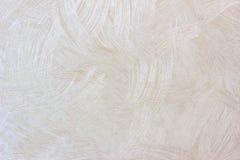 贴墙纸在轻的乌贼属被定调子的,灰色和丝毫的纹理背景 免版税库存图片