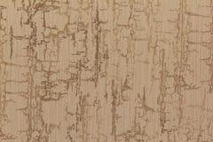 墙纸的近景纹理 免版税库存图片