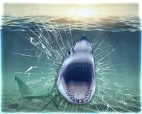 墙纸鲨鱼打破了水族馆并且跳出它 3d翻译 免版税库存图片