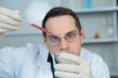 增加下落液体的科学家从吸移管 库存图片
