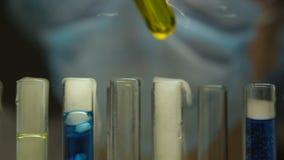 增加物质的试验室工怍人员入试管,监测化学反应 股票视频