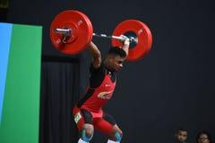 增强的人肌肉向量重量 免版税图库摄影