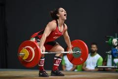 增强的人肌肉向量重量 免版税库存照片