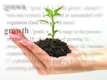 增长主题 免版税库存图片