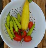 增长的家庭蔬菜 库存照片