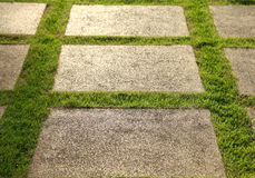 增长的草坪和板岩露台 免版税库存图片