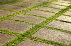 增长的草坪和板岩露台 免版税图库摄影